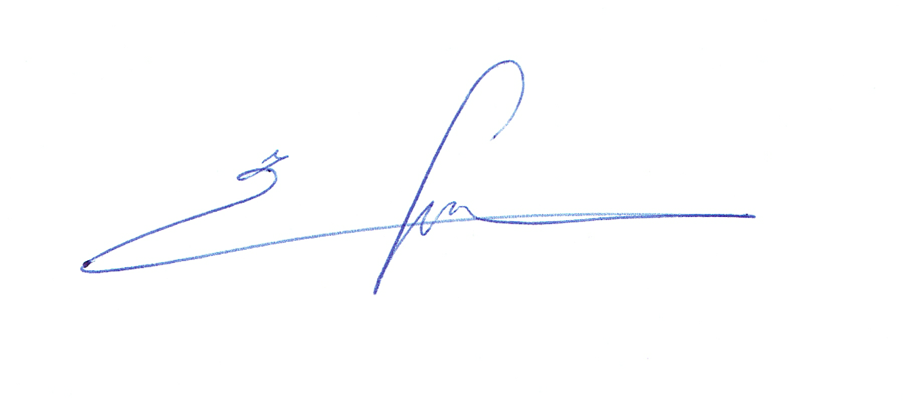 Unterschrift Freydun Desai